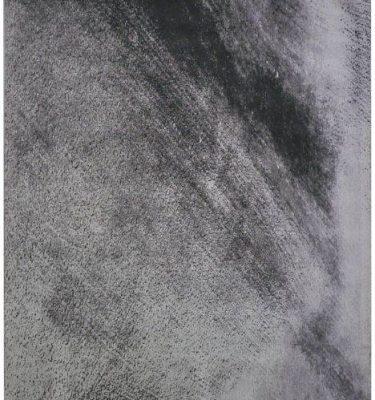CARCN-SH01 SHISO GREYS 168X241